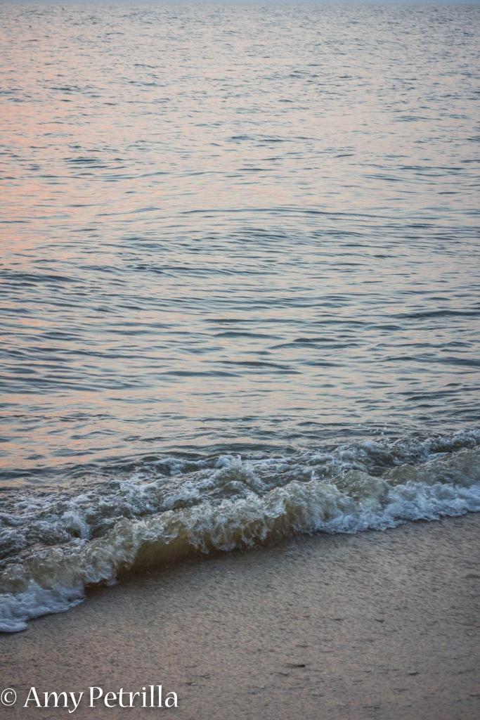 beachnj-131